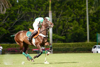 Orchard Hill 4 / Dubai 3 7th Chukker