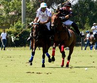 Gold Cup Valiente 14 Orchard Hill 10